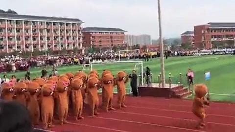 运动会开幕式出现一群网红熊!和小姐姐们跳的串烧舞,好嗨哦!