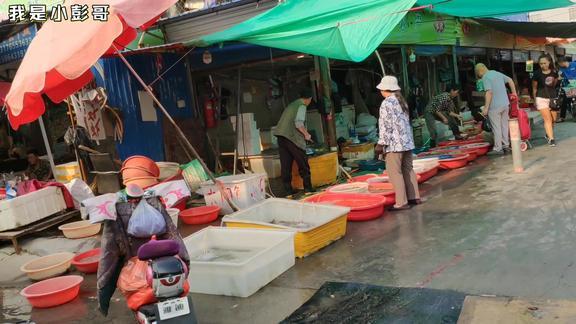 山东淄博,小彭哥带你逛逛淄博最大的菜市场,太大了