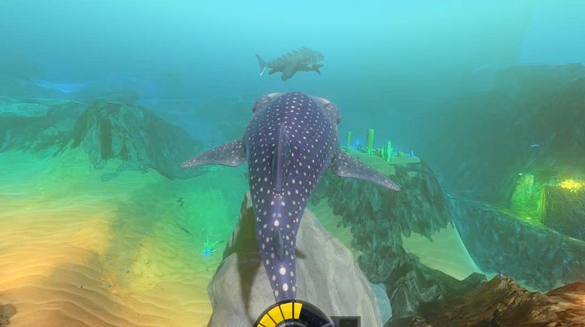 果果解说 海底大猎杀 鲸鲨大战海豚 皮都给撸掉了-23