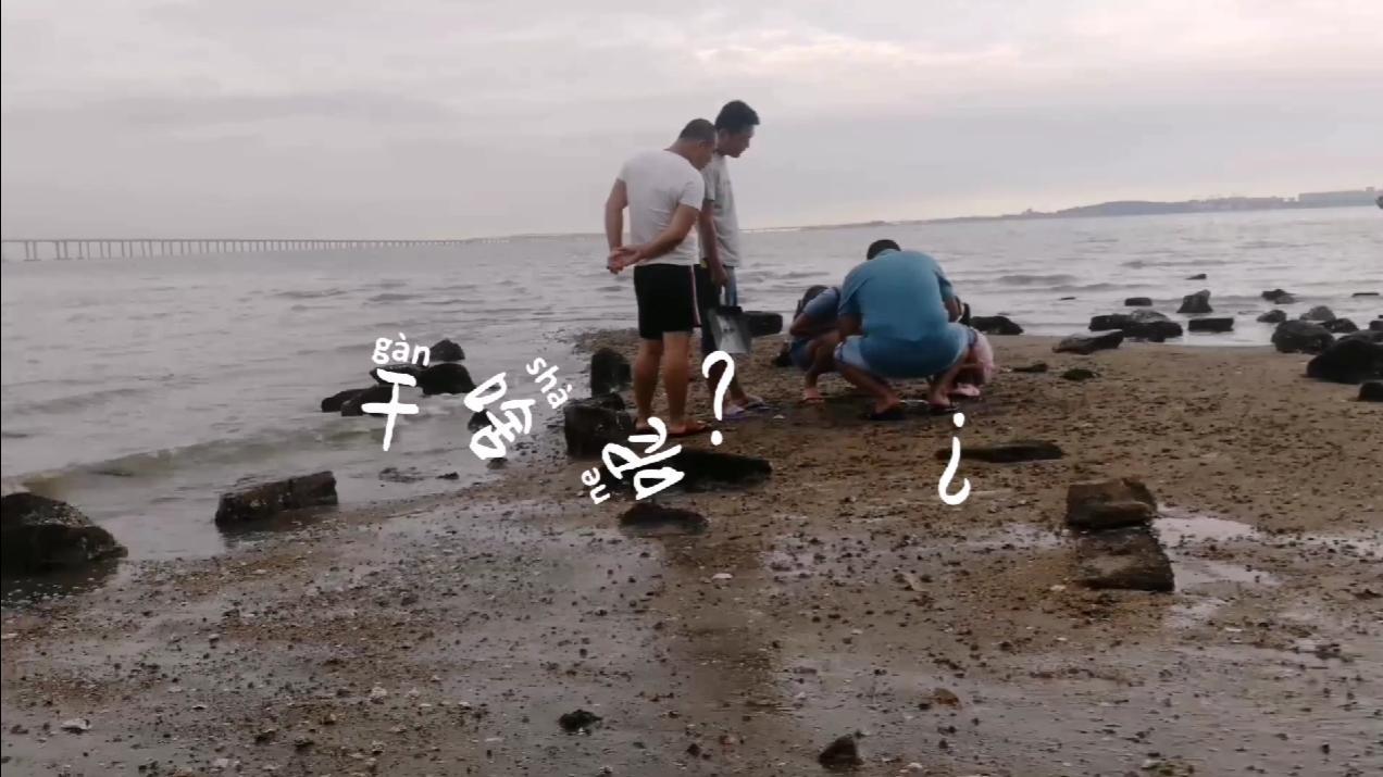 朋友几个去赶海,结果却……