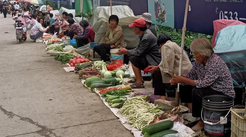 老头老太自家种的蔬菜,几毛钱一斤无人过问,他们太难了