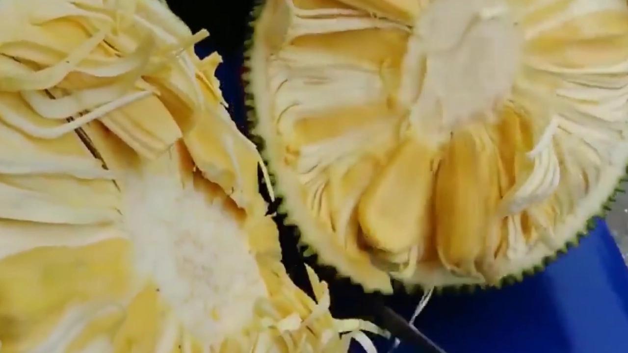 菠萝蜜你是怎么打开的呢?这才是正确的打开方式,进来看看吧