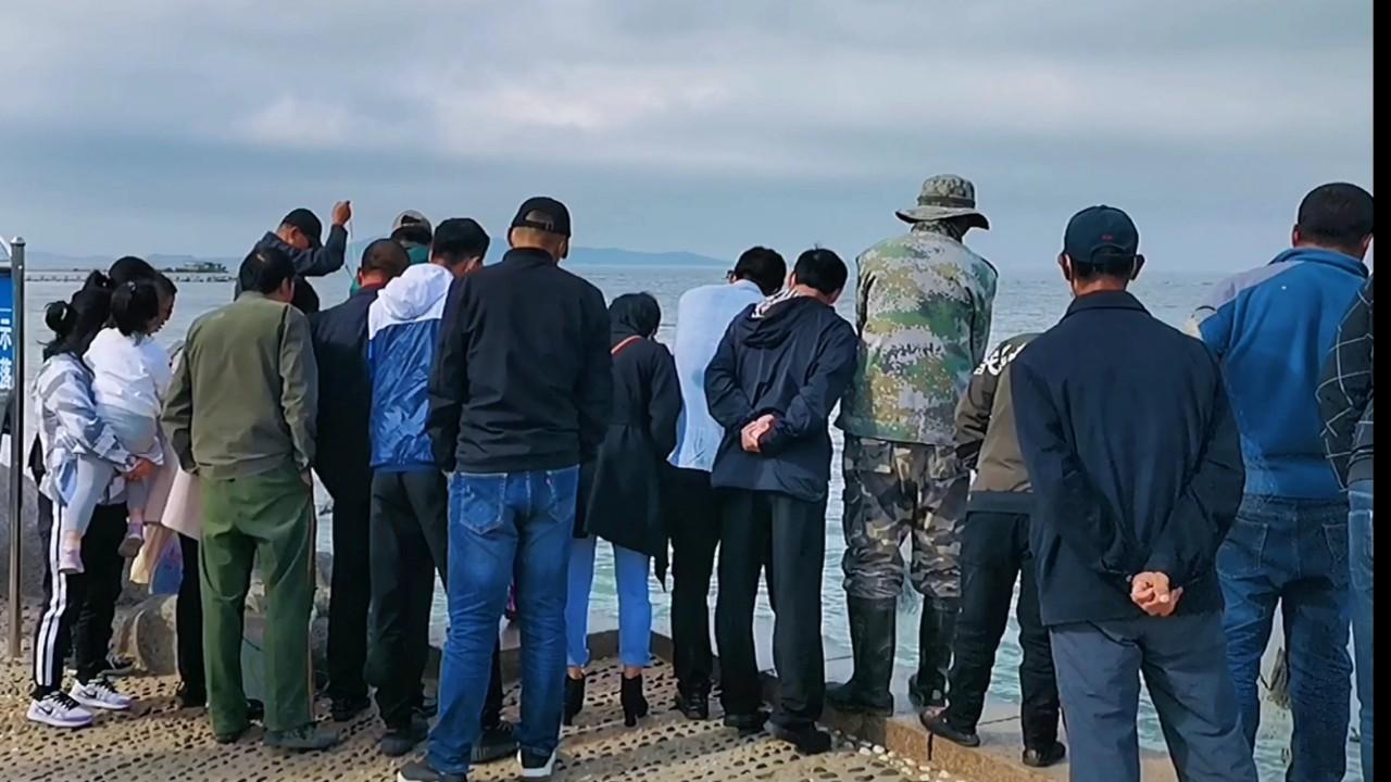威海涨潮遇到鱼群,撒网捕鱼连上大鱼,一尺多长海鱼20元就卖