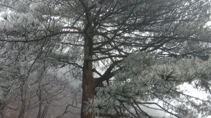 冬日黄山美景