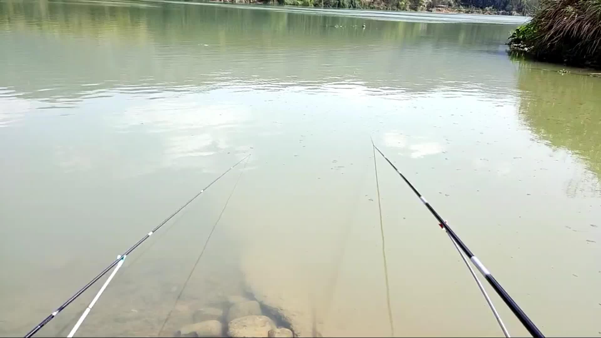 7.3米的杆上的鱼,线声杆声好听